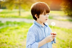 little boy with dandelion
