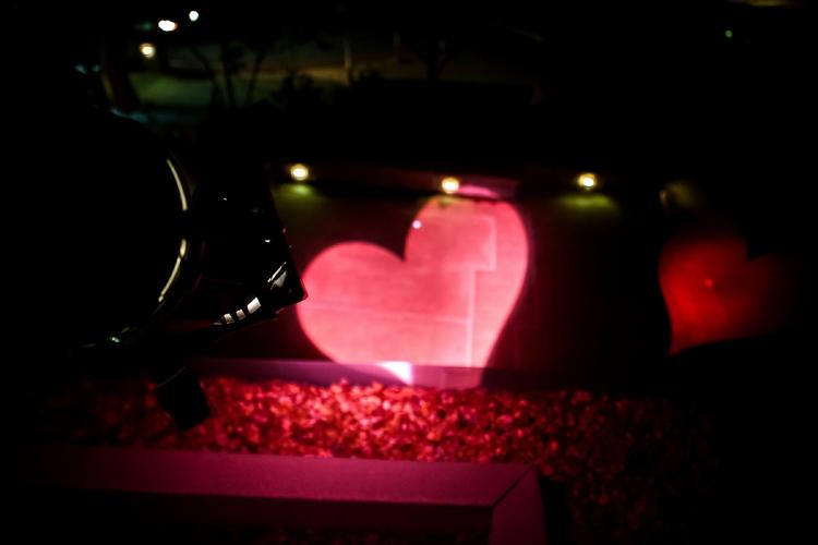 valentine's day at atlanta botanical garden, Ideas