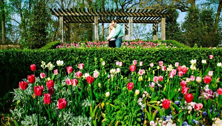 engagement photos at atlanta botanical garden